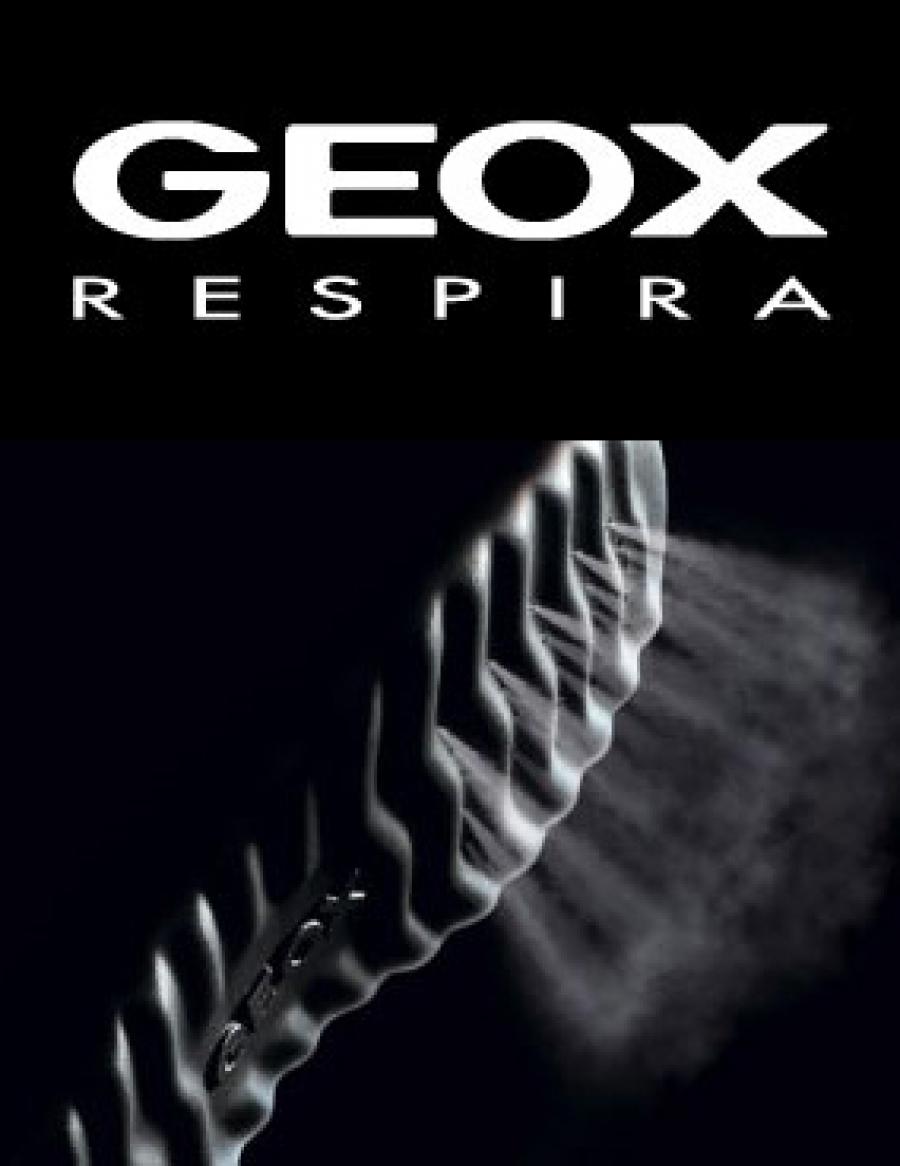 Histoire de Famille n°1   Les chaussures GEOX inventées par Mario et Enrico  MORETTI POLEGATO 467202cb12a